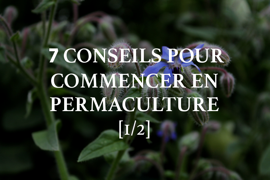 7 conseils pour commencer un jardin en permaculture 1 2 jardiner fut. Black Bedroom Furniture Sets. Home Design Ideas